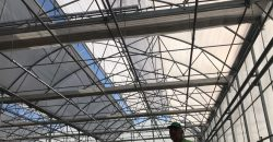 greenhouse climate control systems turkey 10