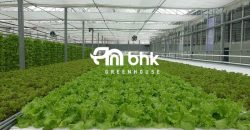 greenhouse-manufacturer1