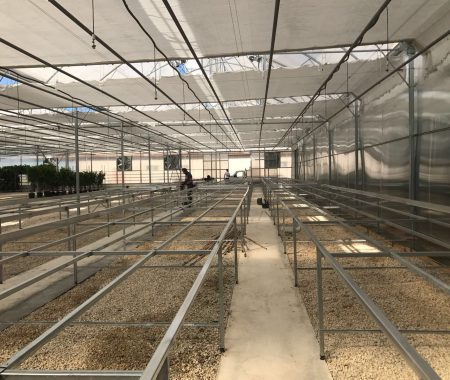 greenhouse-climate-control-systems-turkey-3