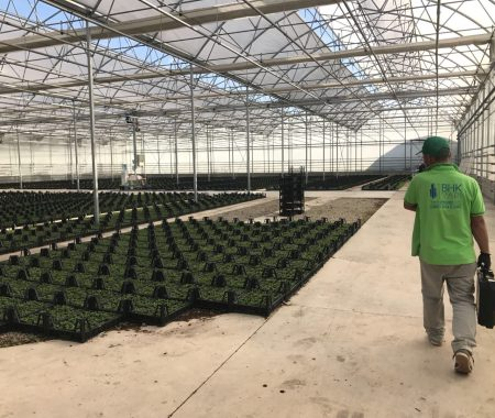 greenhouse-climate-control-systems-turkey-4