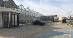 istanbul-yildiz-teknik-uni-hydroponic-greenhouse10
