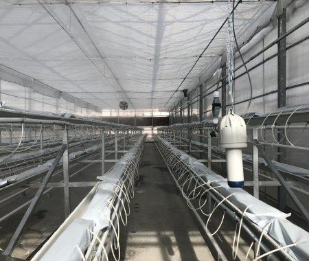 istanbul-yildiz-teknik-uni-hydroponic-greenhouse2